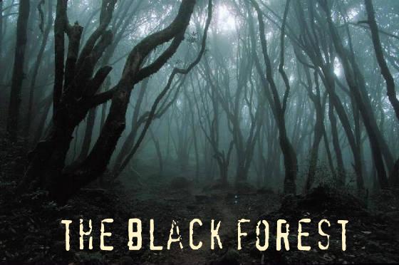 dark_forest_jpg_w560h372[1]
